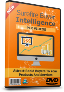 Surefire Buyer Intelligence With PLR